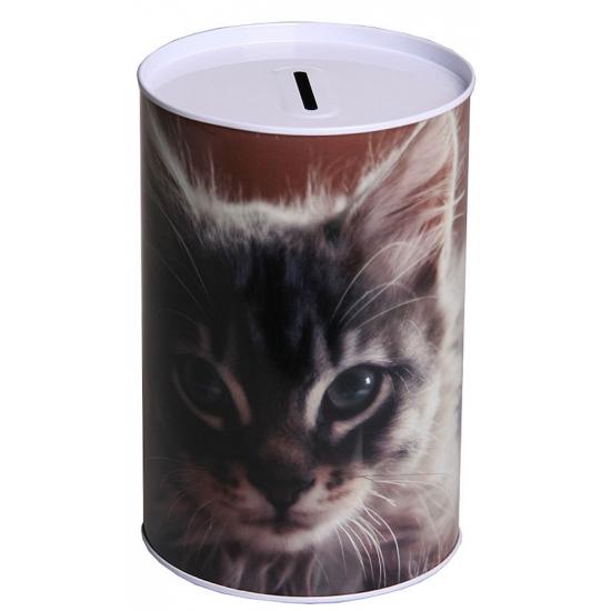 Spaarpot kitten 15 cm type 2