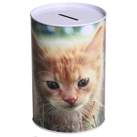 Spaarpot kittens 15 cm type 1