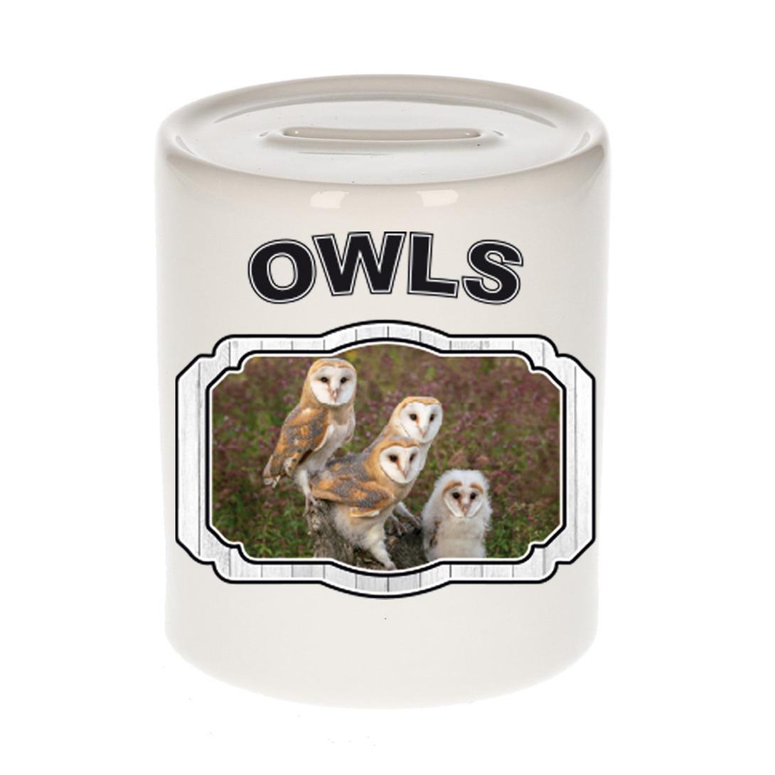 Dieren liefhebber kerkuil spaarpot - uilen cadeau
