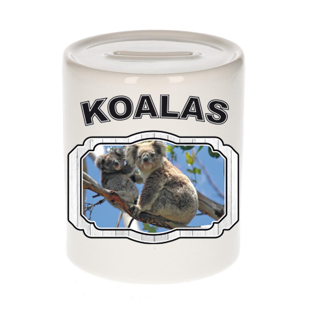 Dieren liefhebber koala beer spaarpot - koalaberen cadeau