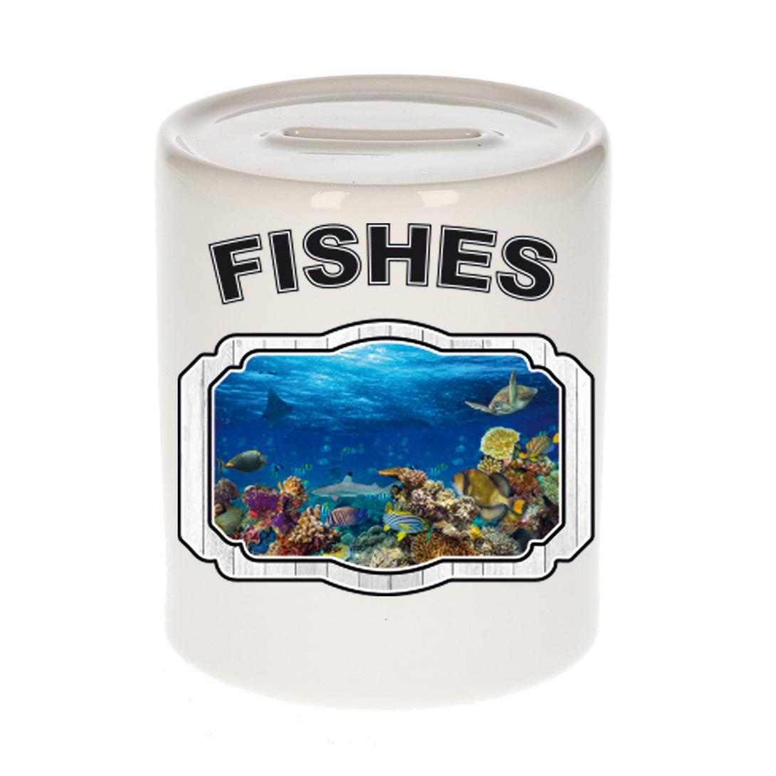 Dieren liefhebber vis spaarpot - vissen cadeau