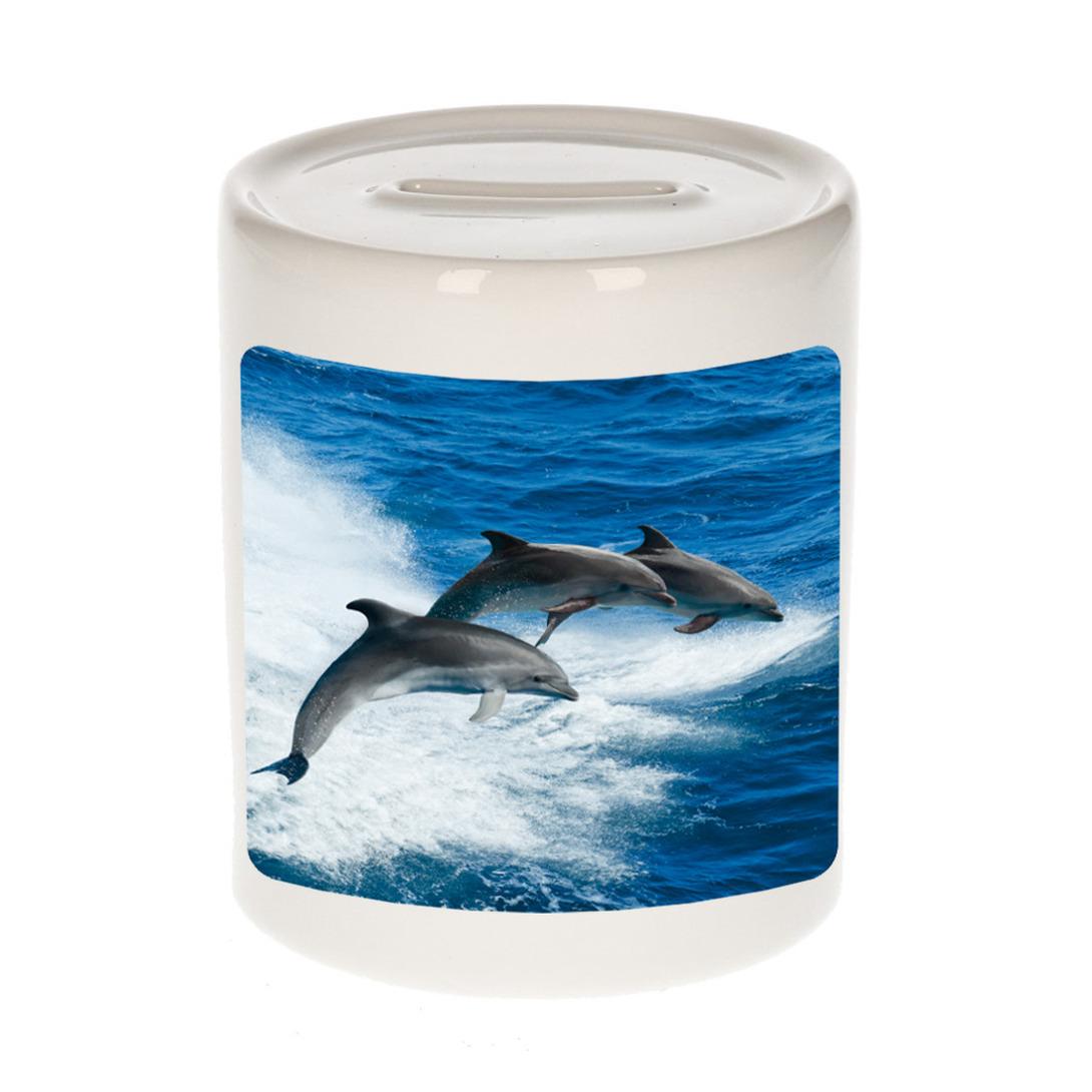 Foto dolfijn groep spaarpot 9 cm - Cadeau dolfijnen liefhebber