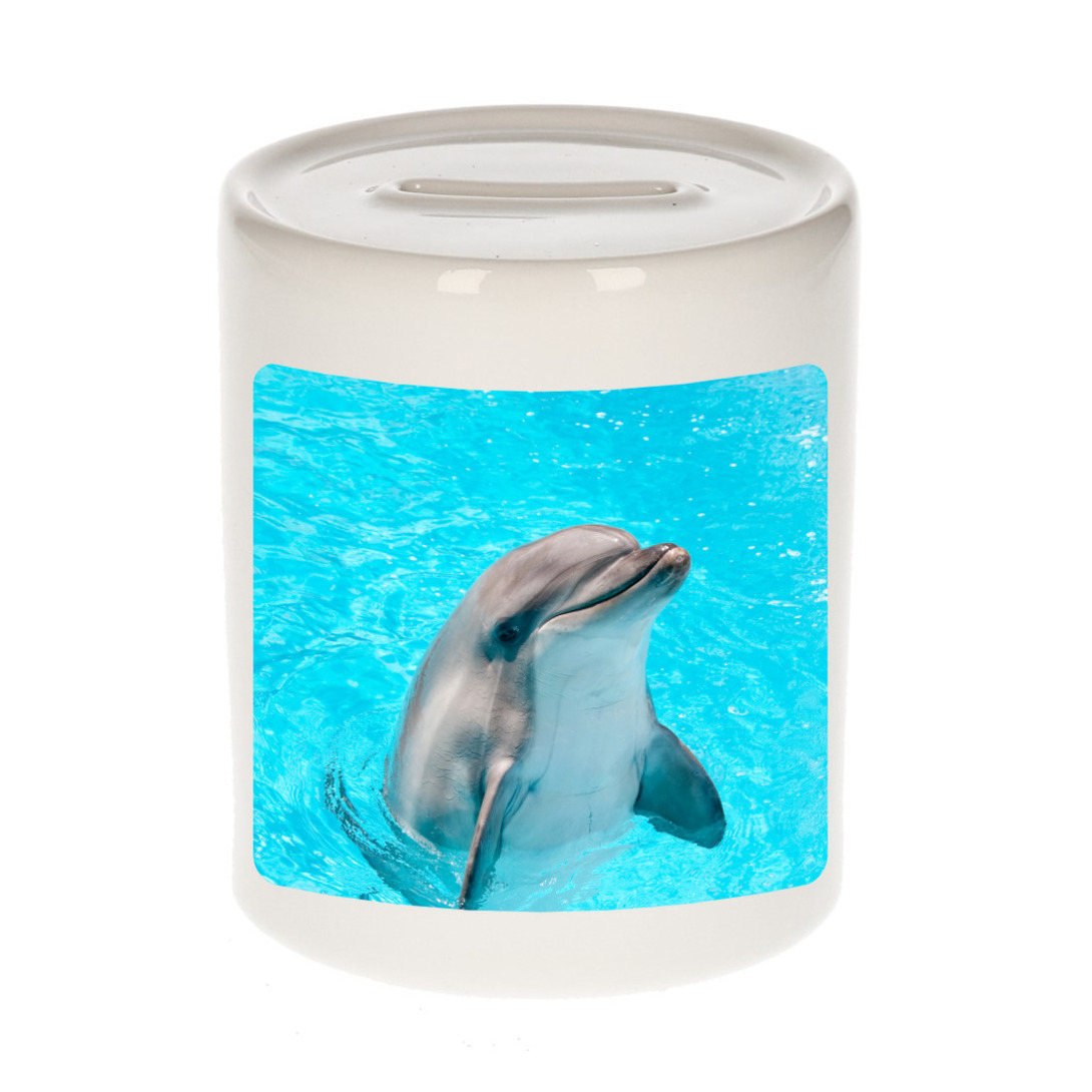 Foto dolfijn spaarpot 9 cm - Cadeau dolfijnen liefhebber