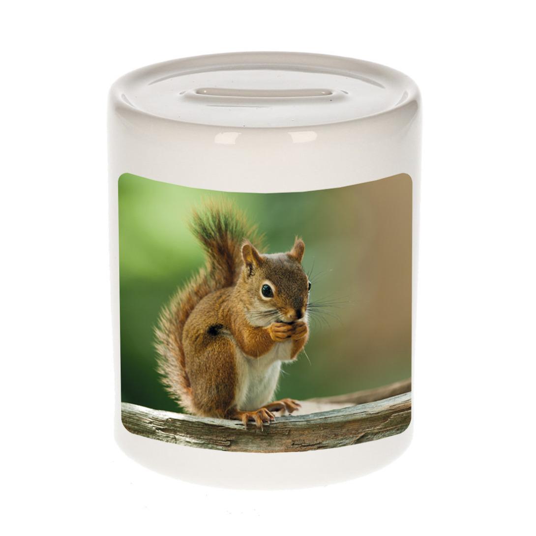 Foto eekhoorn spaarpot 9 cm - Cadeau eekhoorns liefhebber