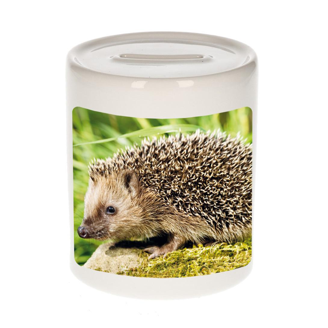 Foto egel spaarpot 9 cm - Cadeau egels liefhebber