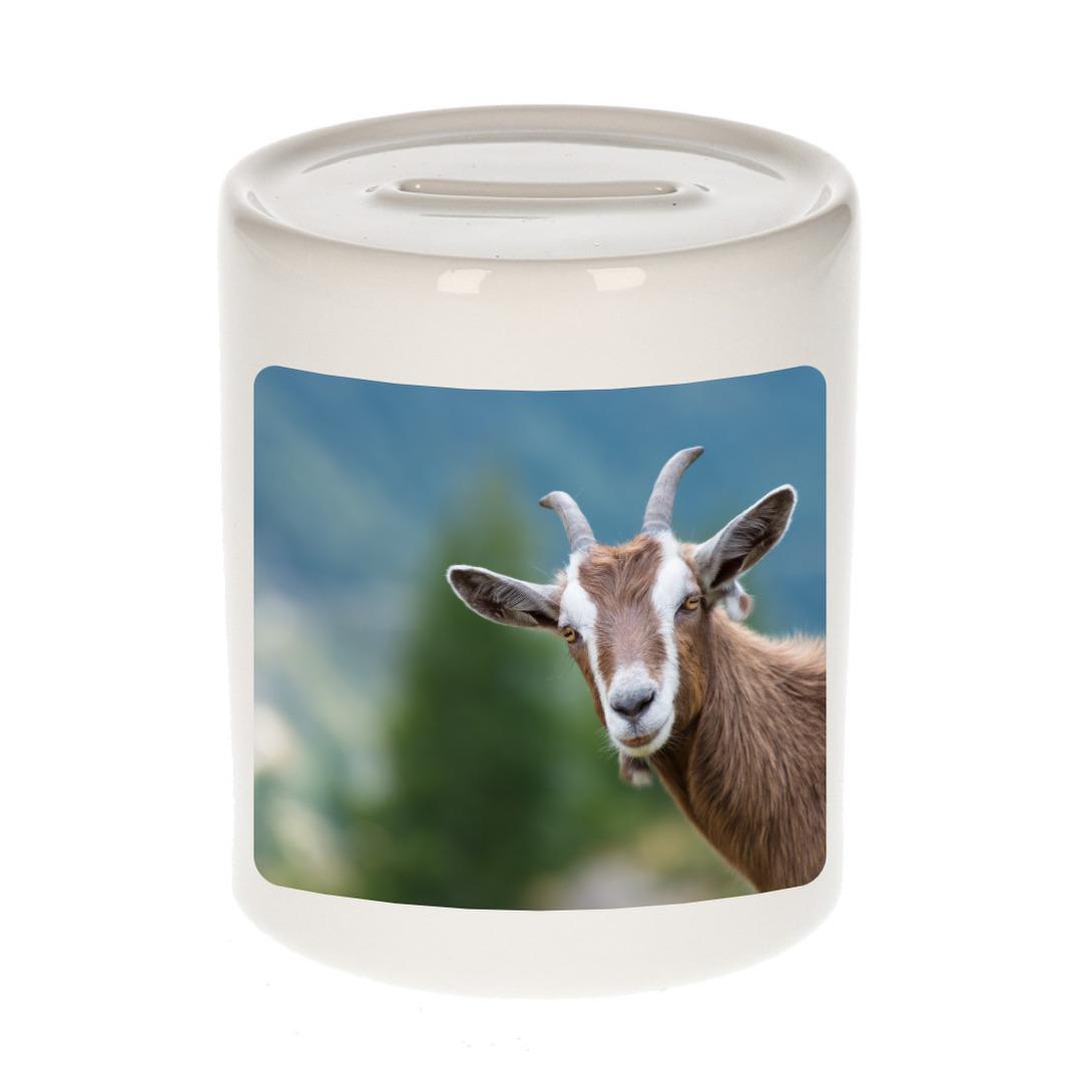 Foto geit spaarpot 9 cm - Cadeau geiten liefhebber