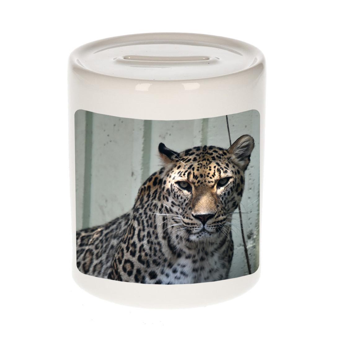 Foto gevlekte jaguar spaarpot 9 cm - Cadeau jaguars liefhebber
