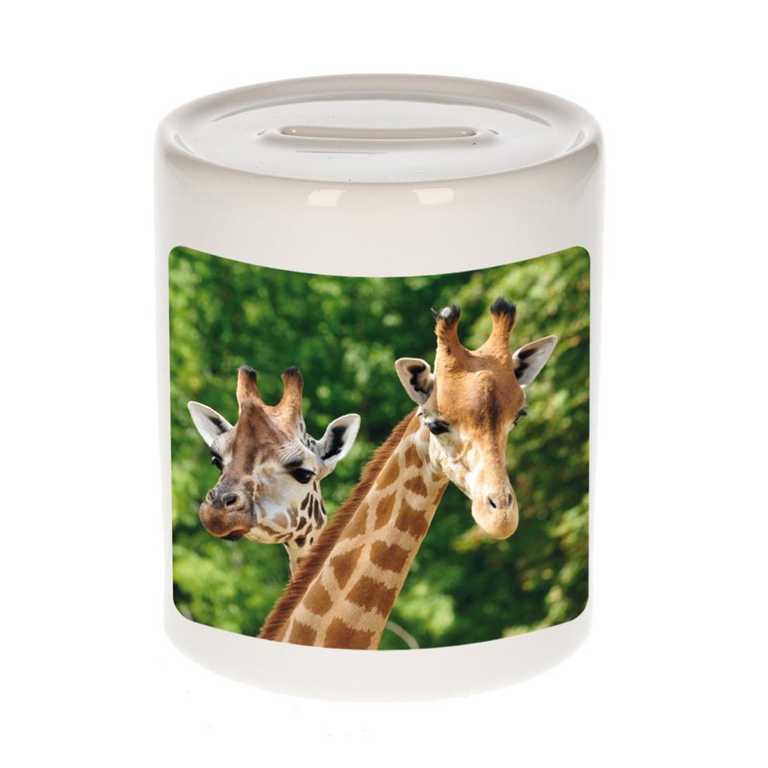 Foto giraffe spaarpot 9 cm - Cadeau giraffen liefhebber