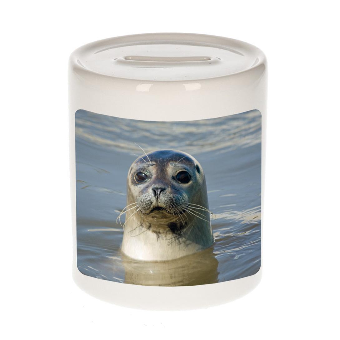 Foto grijze zeehond spaarpot 9 cm - Cadeau zeehonden liefhebber