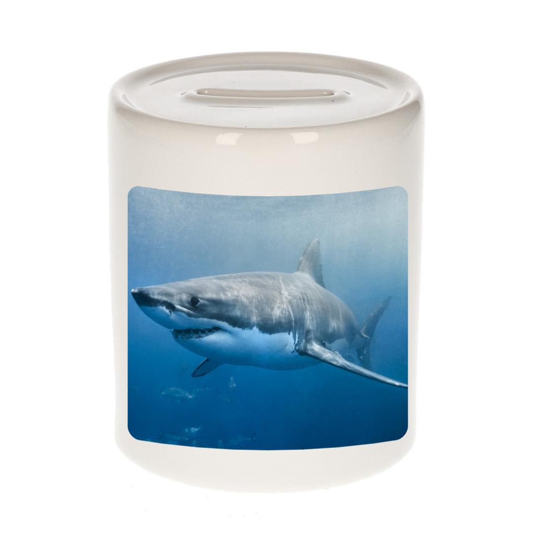 Foto haai spaarpot 9 cm - Cadeau haaien liefhebber