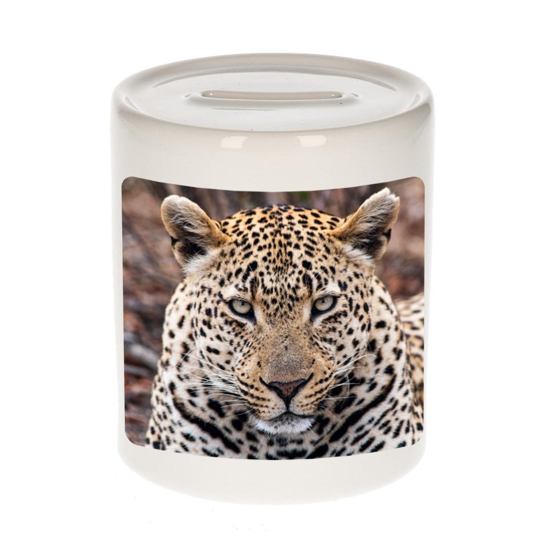 Foto jaguar spaarpot 9 cm - Cadeau jaguars liefhebber