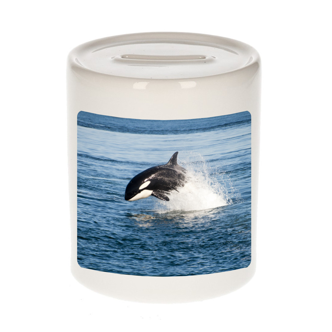 Foto orka spaarpot 9 cm - Cadeau orka vissen liefhebber