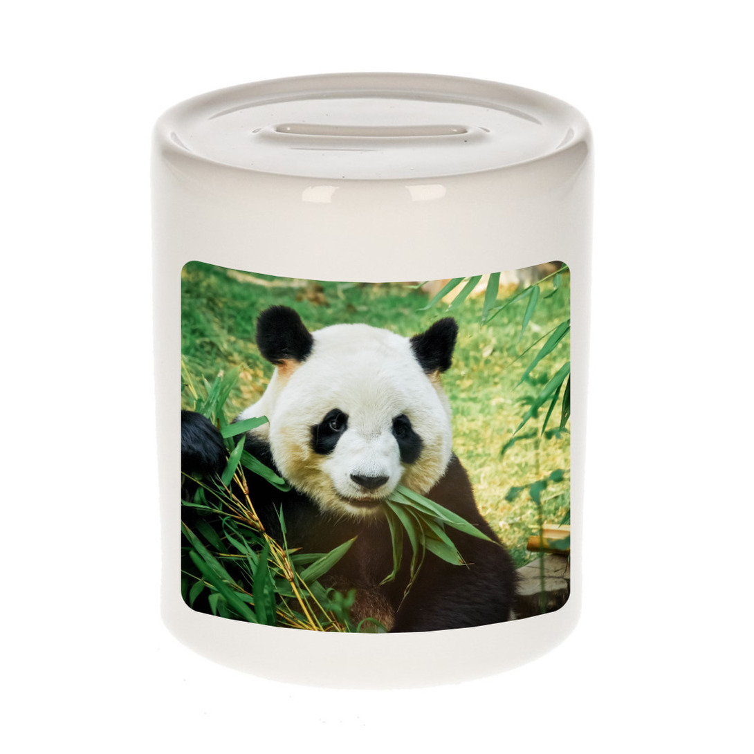 Foto panda spaarpot 9 cm - Cadeau pandaberen liefhebber