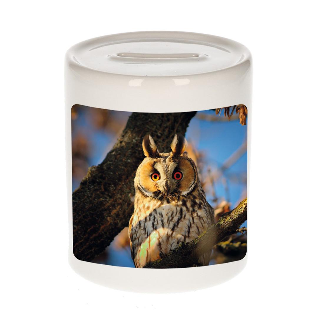 Foto ransuil spaarpot 9 cm - Cadeau uilen liefhebber