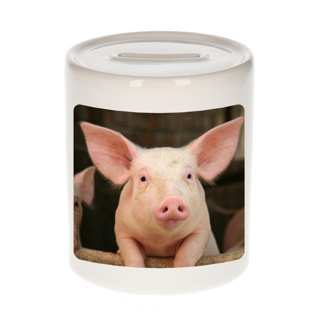 Foto varken spaarpot 9 cm - Cadeau varkens liefhebber