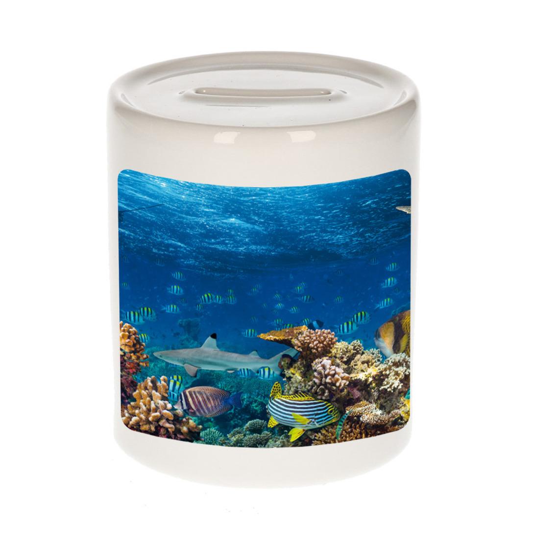 Foto vis spaarpot 9 cm - Cadeau vissen liefhebber