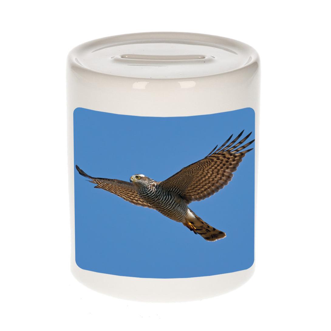 Foto vliegende havik roofvogel spaarpot 9 cm - Cadeau vogels liefhebber