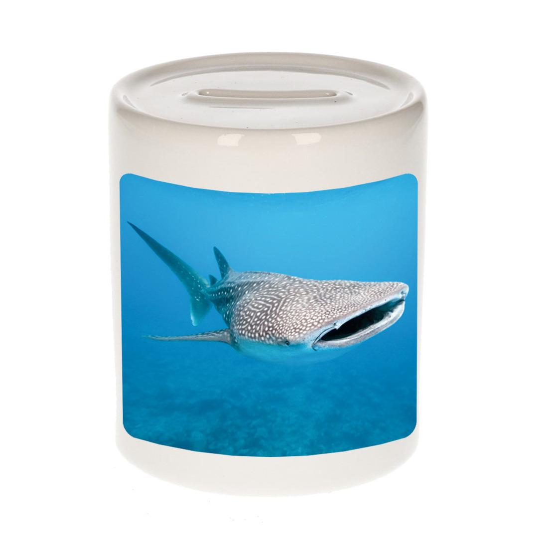 Foto walvishaai spaarpot 9 cm - Cadeau haaien liefhebber