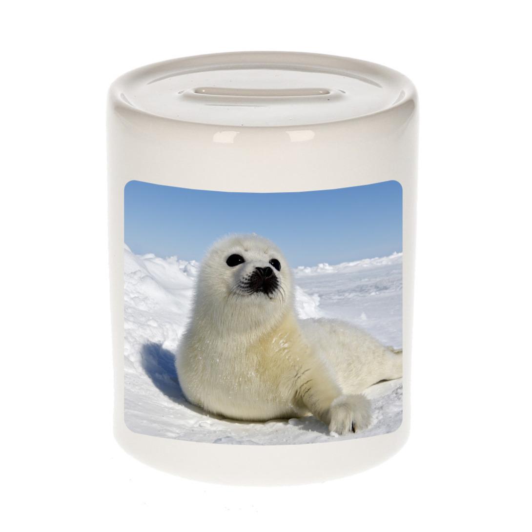 Foto zeehond spaarpot 9 cm - Cadeau zeehonden liefhebber