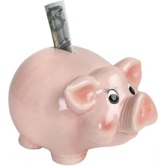 Roze spaarvarkens spaarpotten 18.5 cm